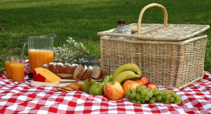 healthy food for picnic