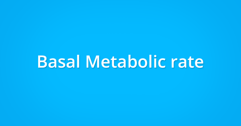 Basal metabolic rate and weight management