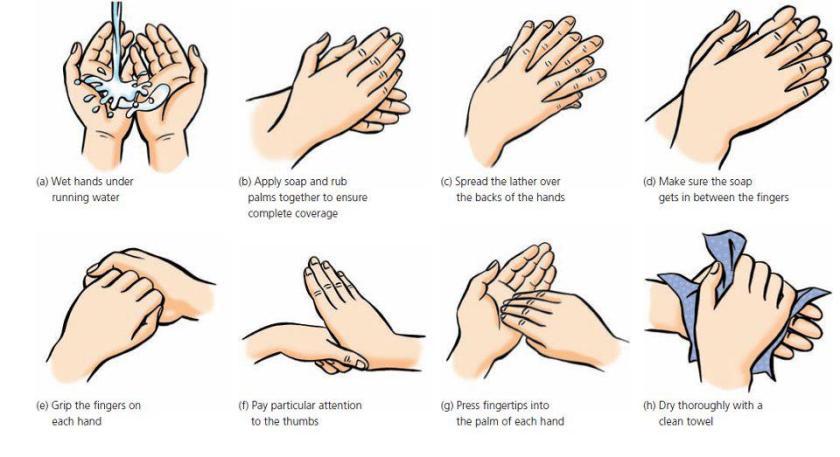 handwashingii