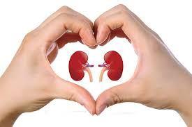 Diabetes and KidneyDisease